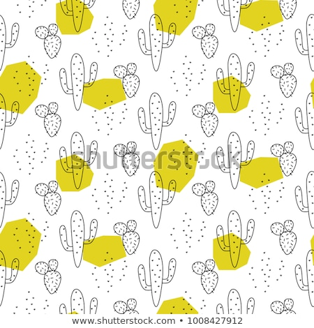 Cactus simple line green spots coloring style vector pattern. stock photo © yopixart