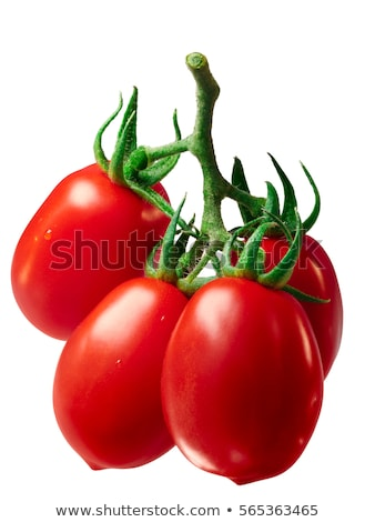 Cluster of plum Roma tomatoes, path Stock photo © maxsol7