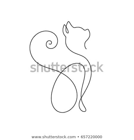 állat · firka · skicc · aranyos · macska · illusztráció - stock fotó © colematt