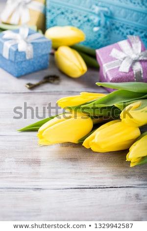Amarillo tulipanes azul metal cuadro luz Foto stock © Melnyk