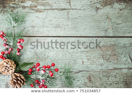 Inverno vacanze decorazione vischio foglie frutti di bosco Foto d'archivio © robuart