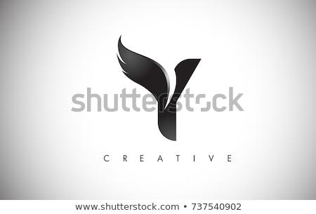 Letter Y Logo.Y Letter Design Vector Stock photo © twindesigner