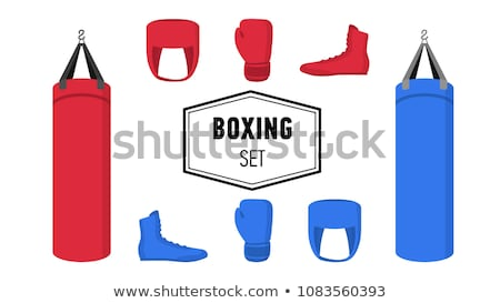 Boxing equipment set isolated, red gloves and punching bags Stock photo © MarySan