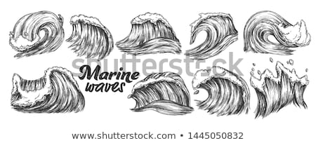 Breaking Atlantic Ocean Marine Wave Storm Vector Stock photo © pikepicture