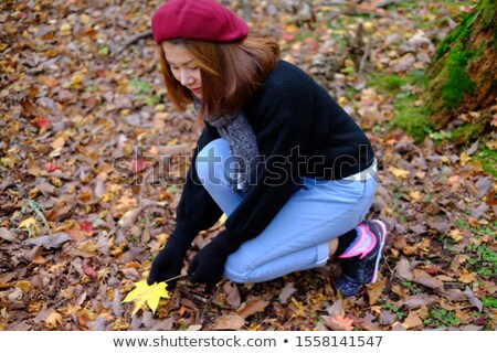 child holding yellow and red leaves little girl with maple leav stock photo © dashapetrenko