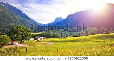 Dolinie alpejski region krajobraz panoramiczny widoku Zdjęcia stock © xbrchx