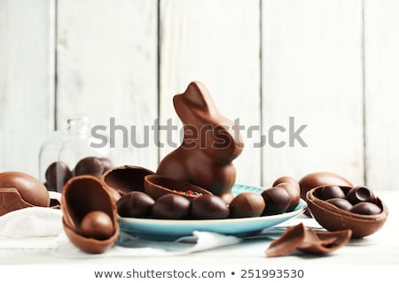 chocolate bunny, eggs and candies on white plate Stock photo © dolgachov
