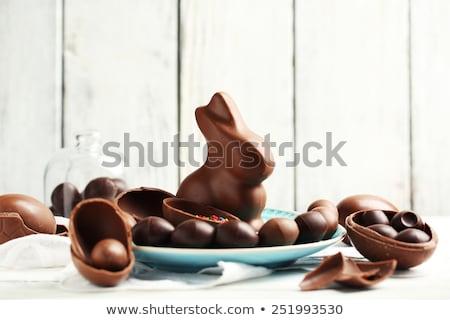 チョコレート バニー 卵 白 プレート ストックフォト © dolgachov