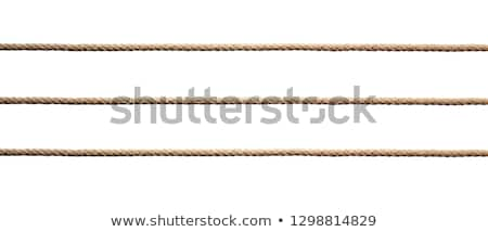 Strong thick hanging ropes Stock photo © boggy