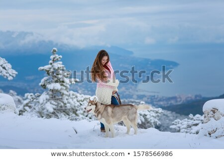 A woman with a purebred husky dog on top of a snowy mountain Stock photo © ElenaBatkova