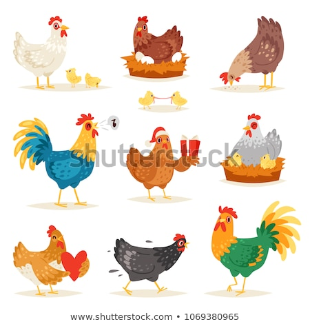 Cute chicken egg and farm animal cartoon set Stock photo © cienpies