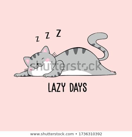 Assonnato cat gattino carattere cartoon Foto d'archivio © izakowski