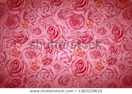 Gyönyörű fényes rózsaszín széles textúra szeretet Stock fotó © evgeny89