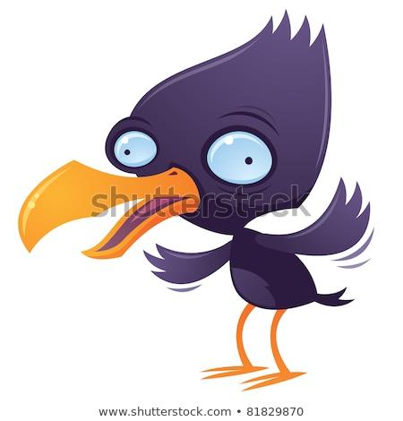 Pássaro vetor desenho animado ilustração azul gritar Foto stock © fizzgig