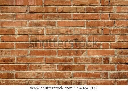 horizontal cracks in orange brown stone Stock photo © Melvin07