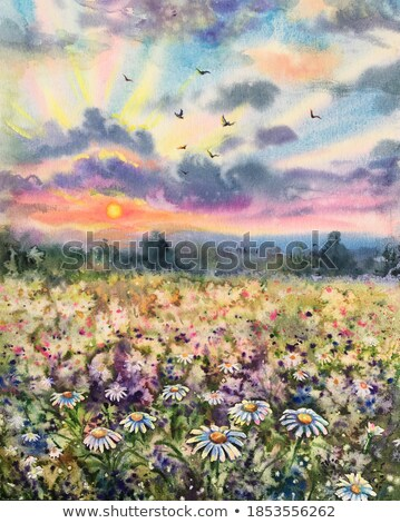 meadow in blossom Stock photo © phbcz
