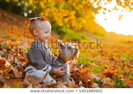 秋 幸せ 子供 ツリー 雲 子供 ストックフォト © pkdinkar