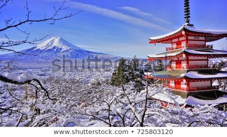 Tél Japán fotó 2011 ajtó imádkozik Stock fotó © fatalsweets