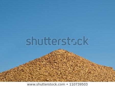 avustralya · boğa · karınca · yuva · mavi · gökyüzü · piramit - stok fotoğraf © byjenjen