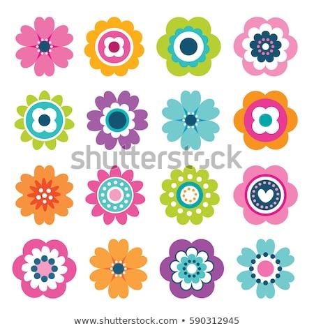 альбом · цветы · вектора · листва · аннотация · дизайна - Сток-фото © malexandric