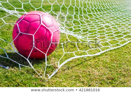 white and pink soccer equipment stock photo © pcanzo