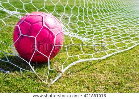 Foto stock: Blanco · rosa · fútbol · todo · necesidad
