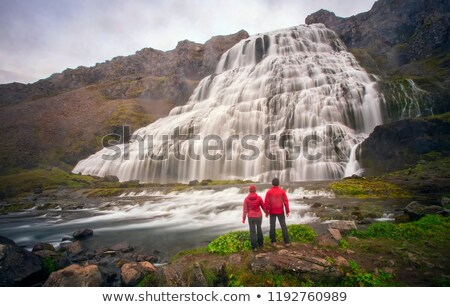 Dynjandi waterfall - Iceland. Stock photo © tomasz_parys