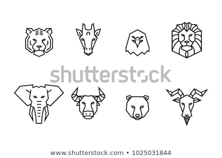 Abstract tribal icons and symbols Stock photo © mikemcd