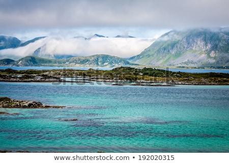 Yelkencilik norveç sahil lüks okyanus kruvazör Stok fotoğraf © Harlekino