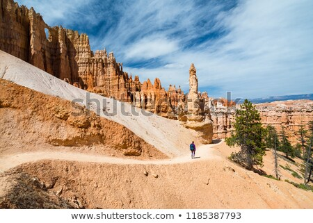 vertical view of navajo trail in bryce canyon stock photo © vwalakte