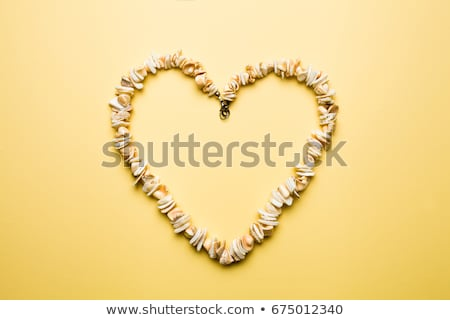 female bracelet with hearts and sea shell isolated on white stock photo © artush