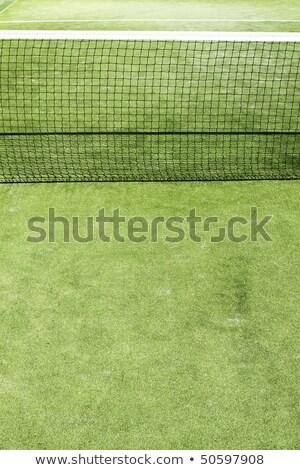 tenisz · zöld · fű · tábor · mező · textúra · fehér - stock fotó © lunamarina