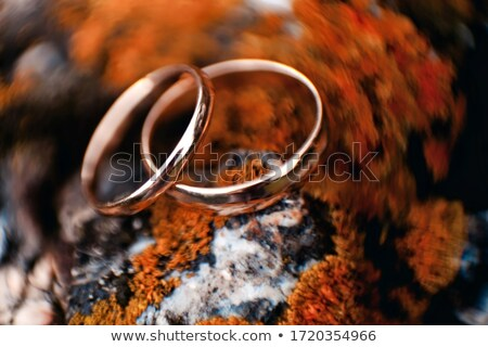 pedra · musgo · textura · dourado · vermelho · amarelo - foto stock © lunamarina