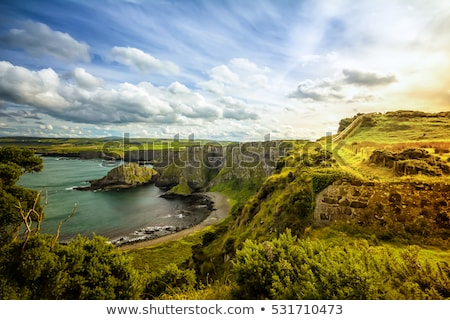 scenic rural landscape from ireland  Stock photo © mady70