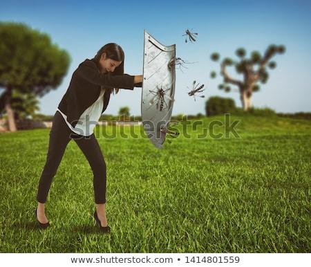 mosquito suck stock photo © blamb