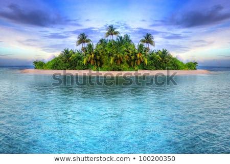 Su tropical island görmek kristal caribbean ada Stok fotoğraf © jkraft5