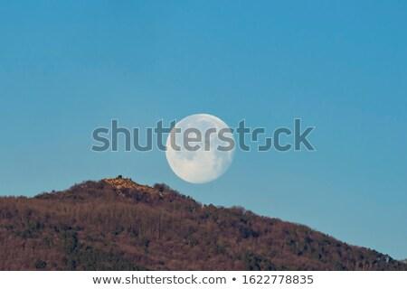 maan · reizen · module · vliegen · digitale · illustratie · ruimte - stockfoto © bsani