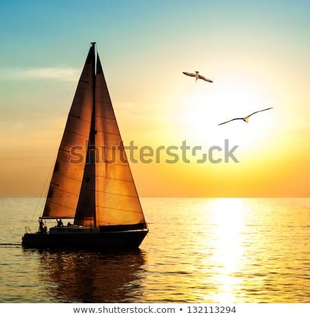 Puesta de sol veleros rojo silueta edad cielo Foto stock © silense