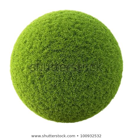 футбольным · мячом · зеленая · трава · области · изолированный · белый · Футбол - Сток-фото © tungphoto