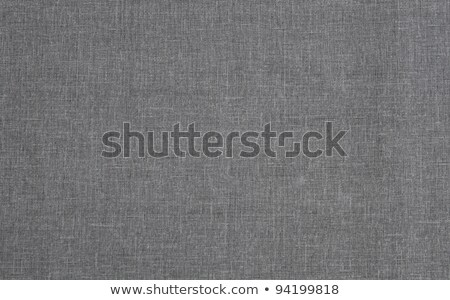 texture of gray-blue cloth  Stock photo © OleksandrO