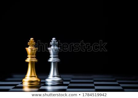 Re pezzo degli scacchi legno isolato istruzione Foto d'archivio © idesign