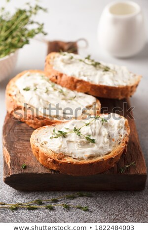fresh vegetarian sandwich with garlic cheese dip salad stock photo © keko64