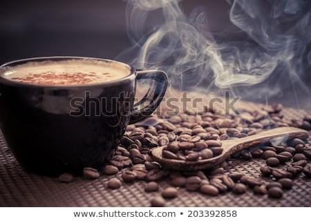 Gurmé kávé elegáns káprázatos fiatal barna hajú Stock fotó © lithian