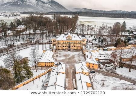 Inverno panorama view campi edifici coperto Foto d'archivio © fotoaloja