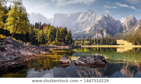 堆石 アルプス山脈 画像 壁 道路 木 ストックフォト © w20er