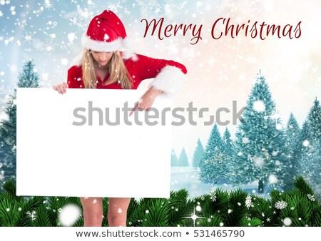 vrouwelijke · vrolijk · christmas · Rood · hoed - stockfoto © kalozzolak