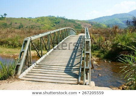 small bridge cross stream at vietnamese countryside this bridge stock photo © xuanhuongho