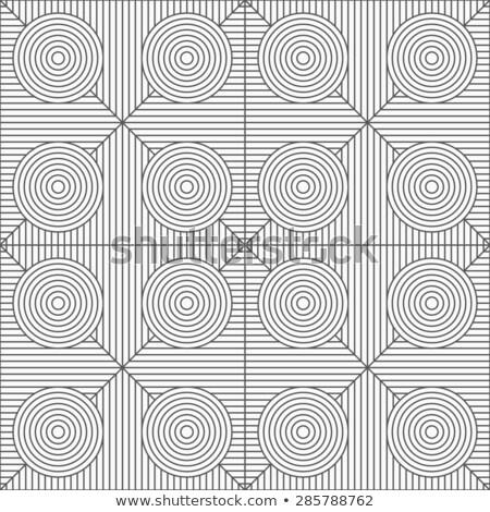 Delgado gris círculos a rayas sin costura Foto stock © Zebra-Finch