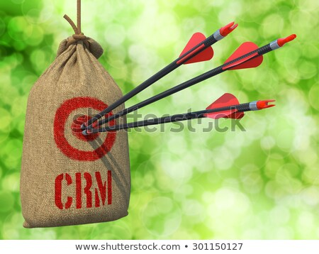 crm   arrows hit in red target stock photo © tashatuvango
