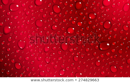 набор красный капли изолированный розовый кровь Сток-фото © Valeo5